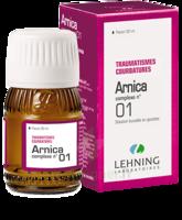 Lehning Arnica Complexe N° 1 Solution Buvable En Gouttes Fl/30ml à Serris