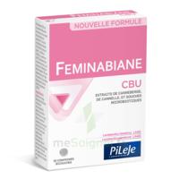 Pileje Feminabiane Cbu 30 Comprimés Bicouches à Serris
