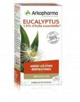 Arkogélules Eucalyptus Gélules Fl/45 à Serris