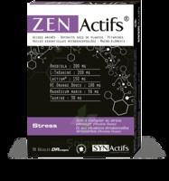 Synactifs Zenactifs Gélules B/30 à Serris