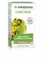 Arkogélules Garcinia Gélules Fl/45 à Serris