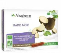 Arkofluide Bio Ultraextract Radis Noir Solution Buvable 20 Ampoules/10ml à Serris