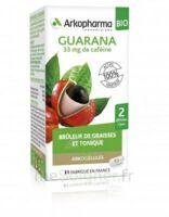 Arkogélules Guarana Bio Gélules Fl/45 à Serris