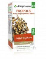 Arkogélules Propolis Bio Gélules Fl/45 à Serris