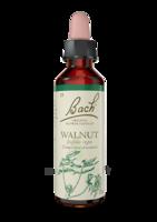 Acheter Fleurs de Bach® Original Walnut - 20 ml à Serris