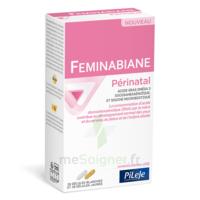 Pileje Feminabiane Périnatal 28 Gélules Blanches Et 28 Gélules Jaunes à Serris