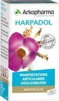 Arkogelules Harpagophyton Gélules Fl/150 à Serris