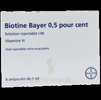 Biotine Bayer 0,5 Pour Cent, Solution Injectable I.m. à Serris
