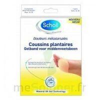 Scholl Coussin Plantaire Douleurs Métatarsales T2 à Serris