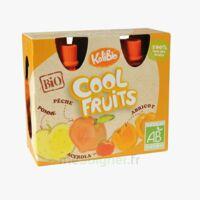 Vitabio Cool Fruits Pomme Pêche Abricot à Serris