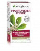 Arkogelules Marronnier D'inde Gélules Fl/45 à Serris