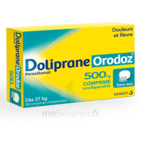 Dolipraneorodoz 500 Mg, Comprimé Orodispersible à Serris
