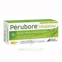 Perubore Caps Inhalation Par Vapeur Inhalation Plq/15 à Serris