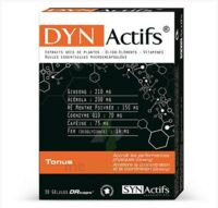 Synactifs Dynactifs Gélules B/30 à Serris