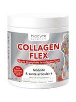 Biocyte - Collagen Flex B/30 à Serris