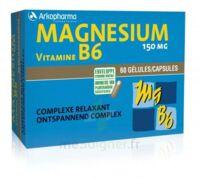 Arkovital Magnésium Vitamine B6 Gélules B/120 à Serris