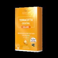 Terracotta Cocktail Solaire Comprimés B/30 à Serris