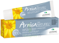 Lehning Arnica Gel T/50g à Serris