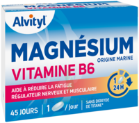 Govital Magnésium Vitamine B6 Comprimés B/45 à Serris