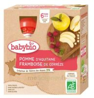 Babybio Gourde Pomme Framboise à Serris