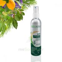 Naturactive Assaini'spray 200ml à Serris