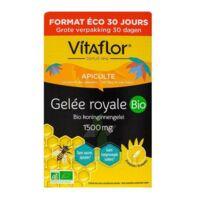 Vitaflor Bio Gelée Royale 1500mg Solution Buvable 30 Ampoules/15ml à Serris