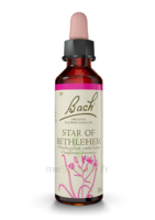 Acheter Fleurs de Bach® Original Star of Bethlehem - 20 ml à Serris