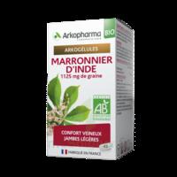 Arkogélules Marronnier D'inde Bio Gélules Fl/45 à Serris