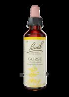 Acheter Fleurs de Bach® Original Gorse - 20 ml à Serris