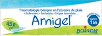 Boiron Arnigel Gel T/45g à Serris